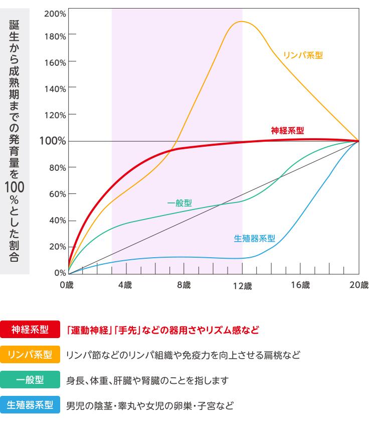 スキャモンの発育・発達曲線