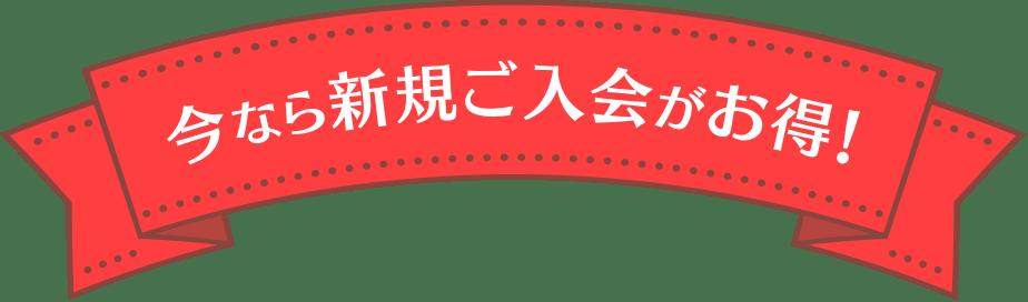 今なら新規ご入会がお得!